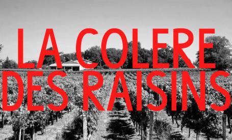 Large banniere colereraisins 01